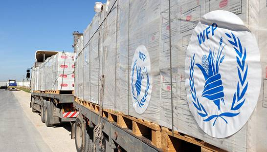 BCG partners with the WFP on refugee food security innovations in Jordan