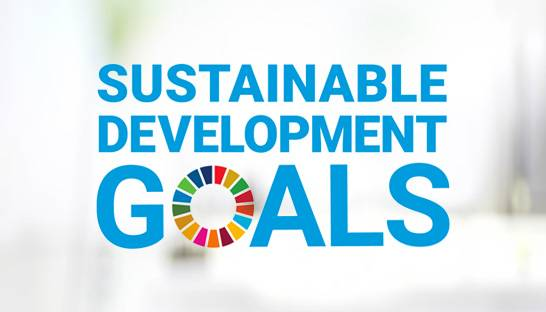 Utilise data capabilities to meet Sustainable Development Goals