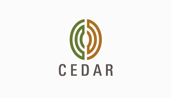 Consulting firm in the Middle East: Cedar Management Consulting